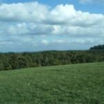 BR 10 acres 2